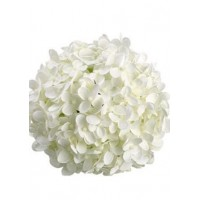 HYDRANGEA S-COLLECTION WHITE PREMIUM - Headsize 19-21cm