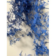 ASPARAGUS - PAINTED ROYAL BLUE