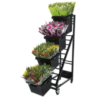 PROCONA PICO FLOWER DISPLAY