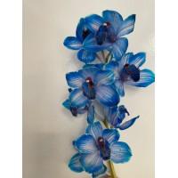 CYMBIDIUM ORCHIDS DOS PUEBLOS - BLUE
