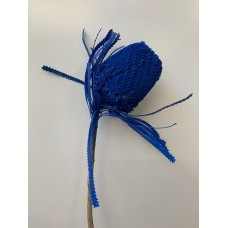 DRIED BANKSIA DYED - ROYAL BLUE