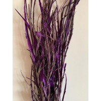 PRESERVED GREVILLA - PURPLE