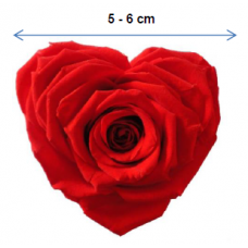 Preserved Heart Shape Rose
