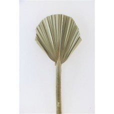 DRIED PALM SPEAR ROUND SMALL NATURAL