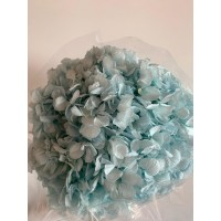 PRESERVED HYDRANGEA - BLUE