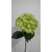 HYDRANGEA S-COLLECTION SELECT -  PINEAPPLE GREEN