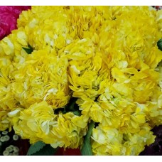 HYDRANGEA S-COLLECTION YELLOW DYED