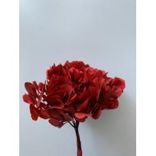 PRESERVED HYDRANGEA - RED